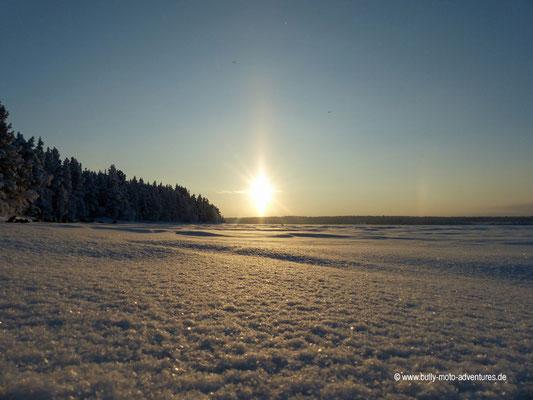 Finnland - Husky-Safari - Winterlandschaft