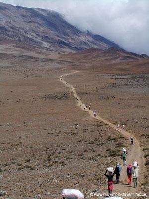 Tansania - Kilimanjaro - Marangu-Route - Wanderung zu den Kibo Huts - Versorgungskarawane