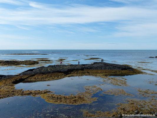 Island - Reykjanes - Küste vor Strandakirkja