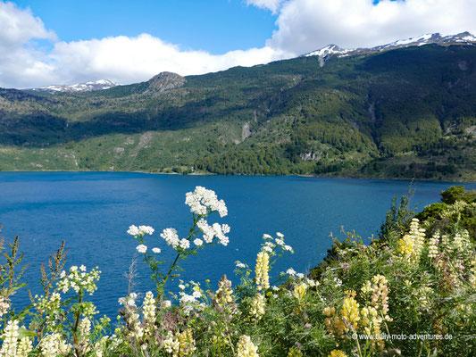 Chile - Parque Nacional Laguna San Rafael - Valle Exploradores - Lago Tranquilo