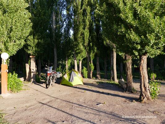 Argentinien - Camping in Upsallata
