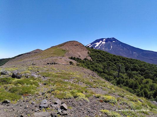Chile - Reserva Nacional Malalcahuello - Wanderweg Sierra del Colorado
