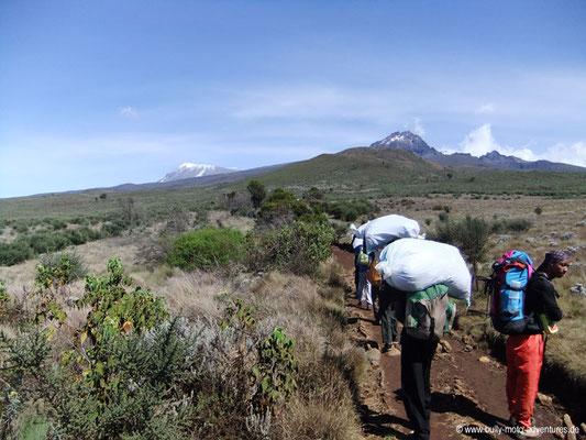Tansania - Kilimanjaro - Marangu Route - Wanderung zu den Horombo Huts - Blick auf den Kibo und den Mawenzi