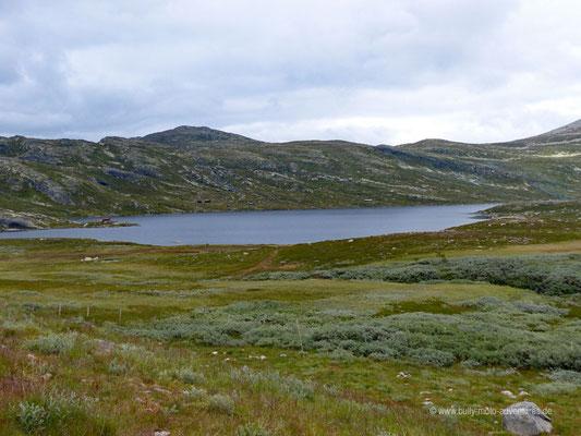 Norwegen - Straße Fv651 in der Nähe des Berges Gaustastoppen
