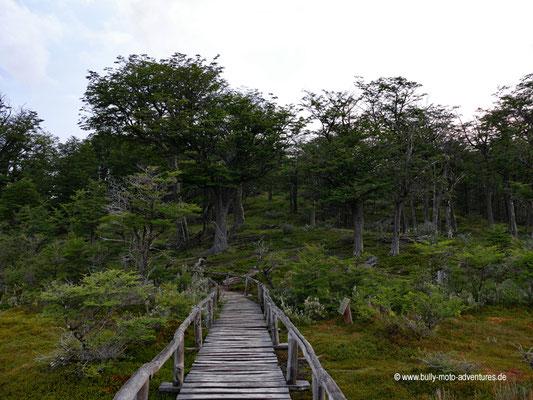 Argentinien - Parque Nacional Tierra del Fuego - Wanderweg Laguna Negra
