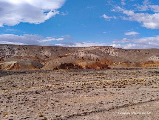 Argentinien - Parque Patagonia - Ruta 40