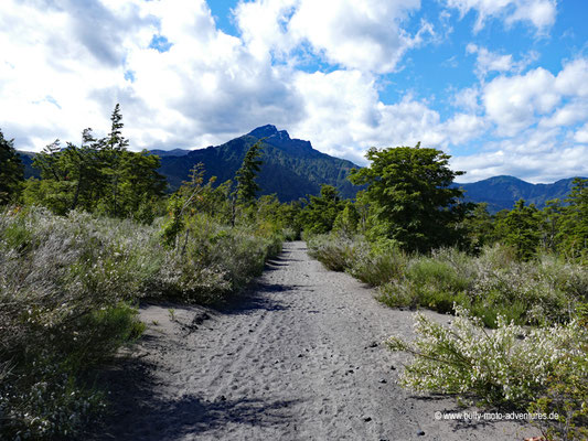Chile - Parque Nacional Vicente Pérez Rosales - Chile - Parque Nacional Vicente Pérez Rosales - Wanderweg Paso Desolación