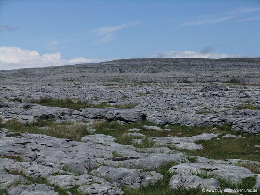 Irland - The Burren - Co. Clare
