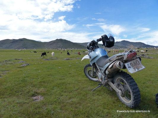 Mongolei - Schlucht Chuluut