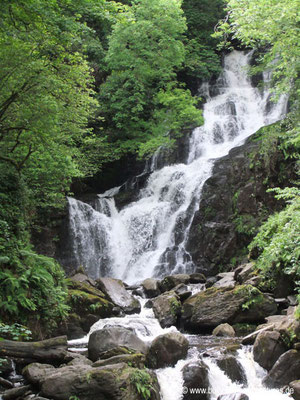 Irland - Torc Wasserfall - Killarney Nationalpark - Co. Kerry