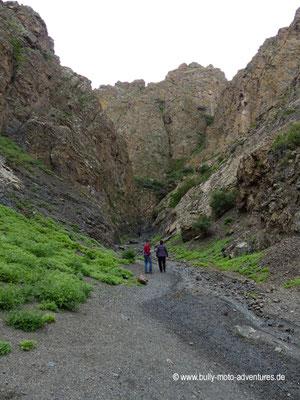 Mongolei - Schlucht Mukhar Shiveert