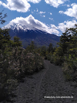 Chile - Parque Nacional Vicente Pérez Rosales - Wanderweg