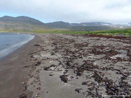 Island - Hornstrandir - Etappe 1 - Veiðileysufjörður nach Hornvík - Hornvík