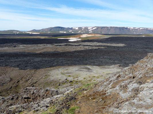 Island - Vulkansystem Krafla - Lavafeld