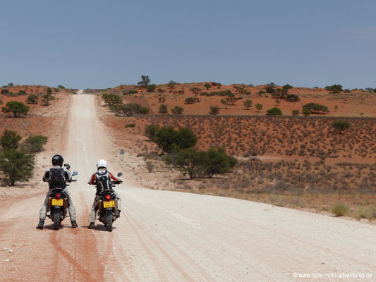 Rote Dünen der Kalahari-Wüste