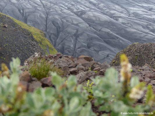 Island - Skaftafell Nationalpark - Gletscher Skaftafellsjökull