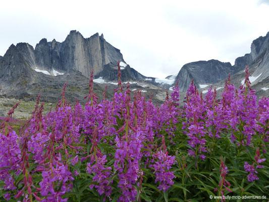 Grönland - Tasermiut Fjord - Blick auf den Berg Nalumasortoq (ca. 2050 m hoch)