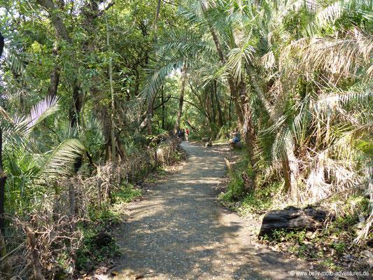 Simbabwe - Weg entlang der Victoria Wasserfälle