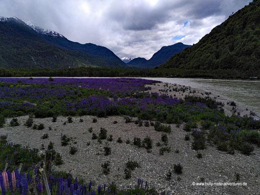 Chile - Carretera Austral südlich von Villa Caerro Castillo