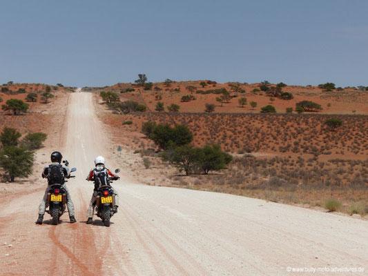 Namibia - Straße C17 - Durch die Dünen der Kalahari