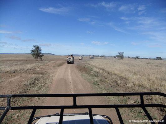 Tansania - Serengeti - Blick aus dem Auto