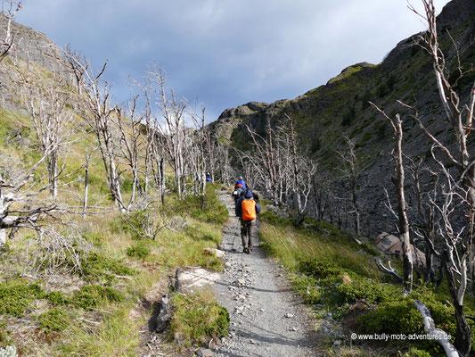 Chile - Parque Nacional Torres del Paine - W-Trek - Wanderung zum Grey Gletscher