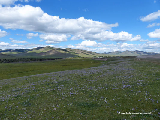 Mongolei - Piste zwischen Kloster Tövkhön Khiid und Tsenkher