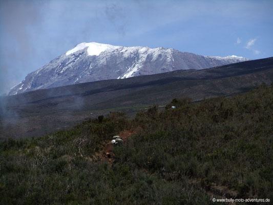 Tansania - Kilimanjaro - Marangu Route - Wanderung zu den Horombo Huts - Blick auf den Kibo