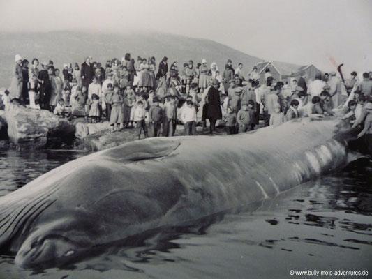 Grönland - Museum von Nanortalik - Bild aus vergangenen Zeiten