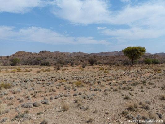 Namibia - Straße C13