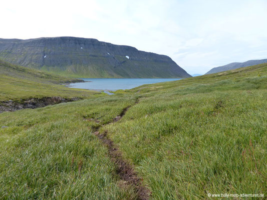 Island - Hornstrandir - Wanderpfad