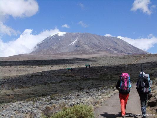 Tansania - Kilimanjaro - Marangu-Route - Wanderung zu den Kibo Huts - Blick auf den Kibo
