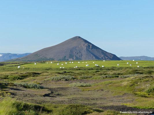 Island - Blick auf Vindbelgjarfjall