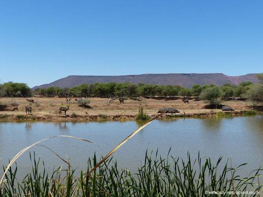 Namibia - Mt. Etjo Safari Lodge - Wasserloch