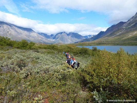 Grönland - Wanderung von Tasiusaq nach Nuugaarsuk - Üppige Vegetation