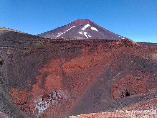 Chile - Reserva Nacional Nalcas - Wanderung zum Crater Navidad - Vulkan Lonquimay