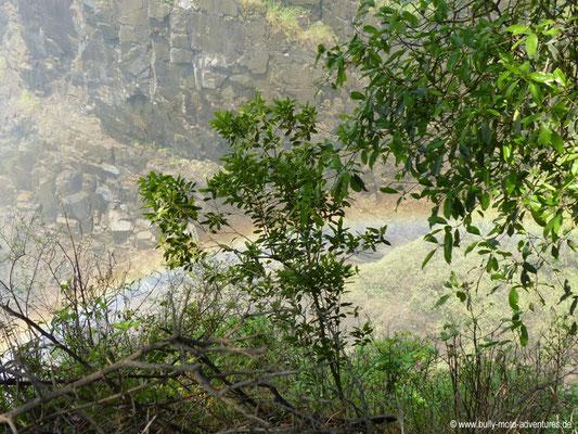 Simbabwe - Victoria Wasserfälle - Regenbogen