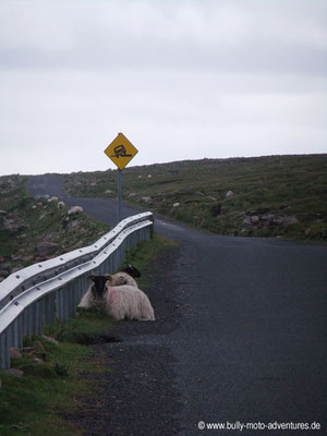 Irland - Corraun Peninsula - Co. Mayo