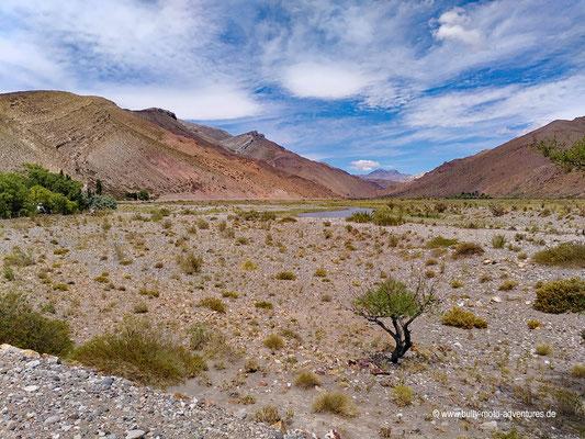 Argentinien - Ruta 40 bei Bardas Blancas
