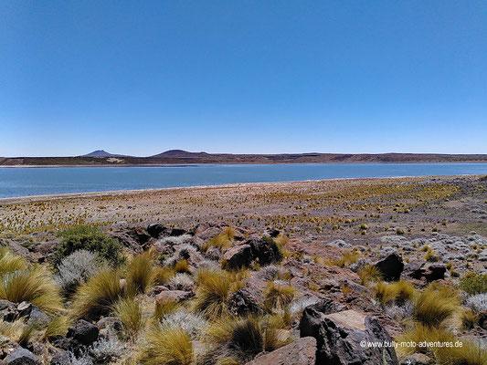 Argentinien - Parque Nacional Laguna Blanca