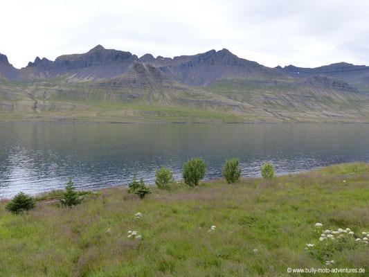 Island - Ostfjorde - Entlang der Straße 96