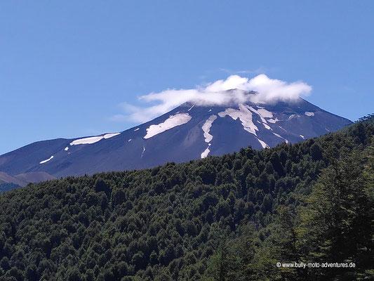 Reserva Nacional Malalcahuello - Wanderweg Piedra Santa
