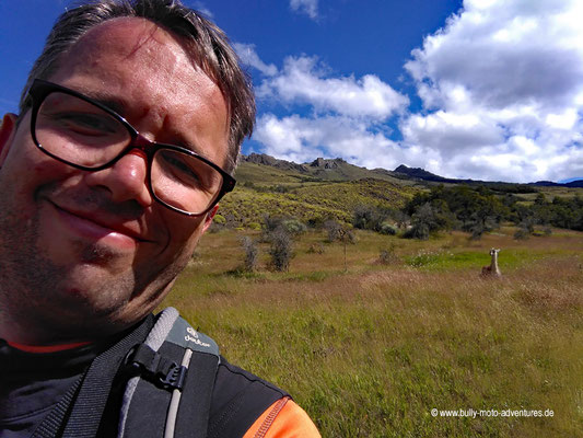 Chile - Parque Nacional Patagonia - Valle Chacabuco - Selfie mit einem Guanako