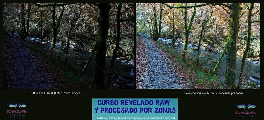Roser, revelado en camara RAW para sacar toda la información de un bosque, sendero y río que parecían perdidos. Curso de Revelado RAW y procesado por zonas.