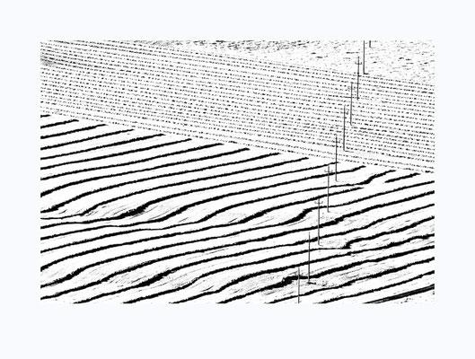 Bäuerliche Strukturen