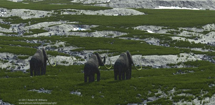 Mammuter i pleistocenperioden, for 100 000 år siden.