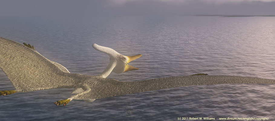 Pteranodon fly over the shallow sea that covered most of Scandinavia during the Campanian age (75 million years ago) of the Late Cretaceous.