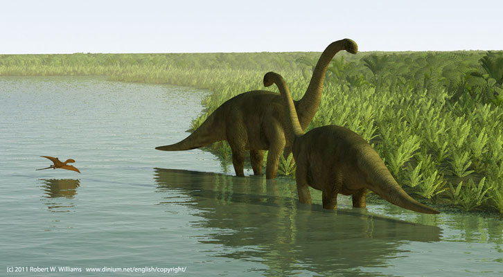 Cetiosaurus beiter på bregner og konglepalmer på deltasletten mellom Norge og Skottland for 170 millioner år siden. Cetiosaurus var 14-18 meter lang og ca 10 tonn.