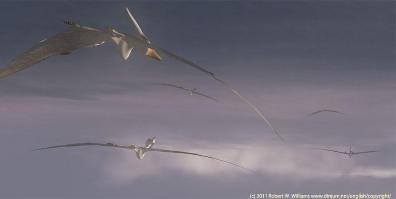 En flokk med flyveøglen Pteranodon som levde i sein kritt, for 75 millioner år siden.