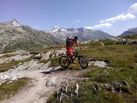 Mit dem Mountainbike Trek unterwegs auf dem Grimselpass